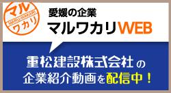 愛媛の企業マルワカリ企業