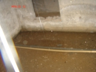DSC07137_20100115191659.jpg