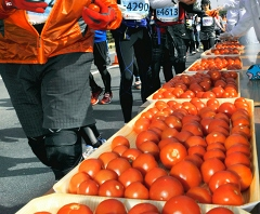 food_tomato.jpg